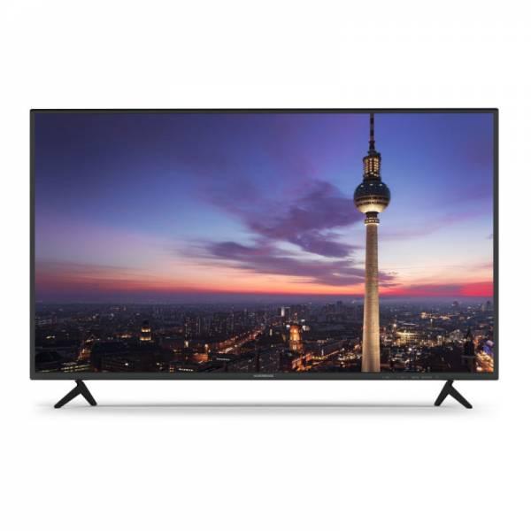 TechniSat Fernseher Front Schwarz (Wegavision FHD43A)