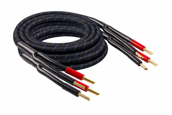 LS Single-Wire 300