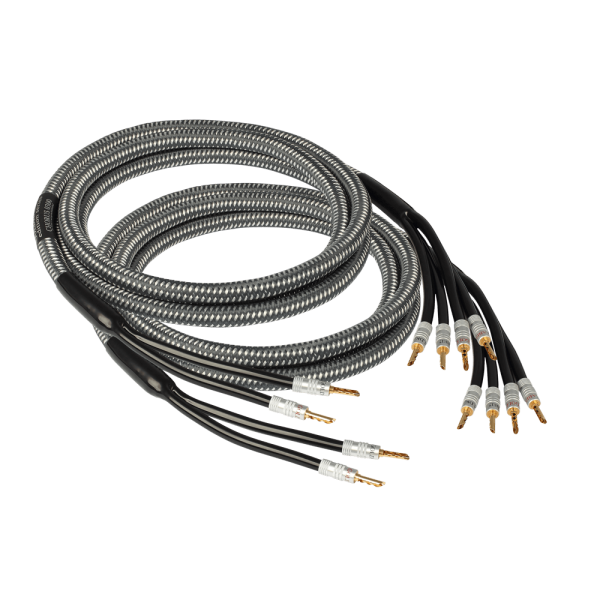 edition Chorus Bi-Wire